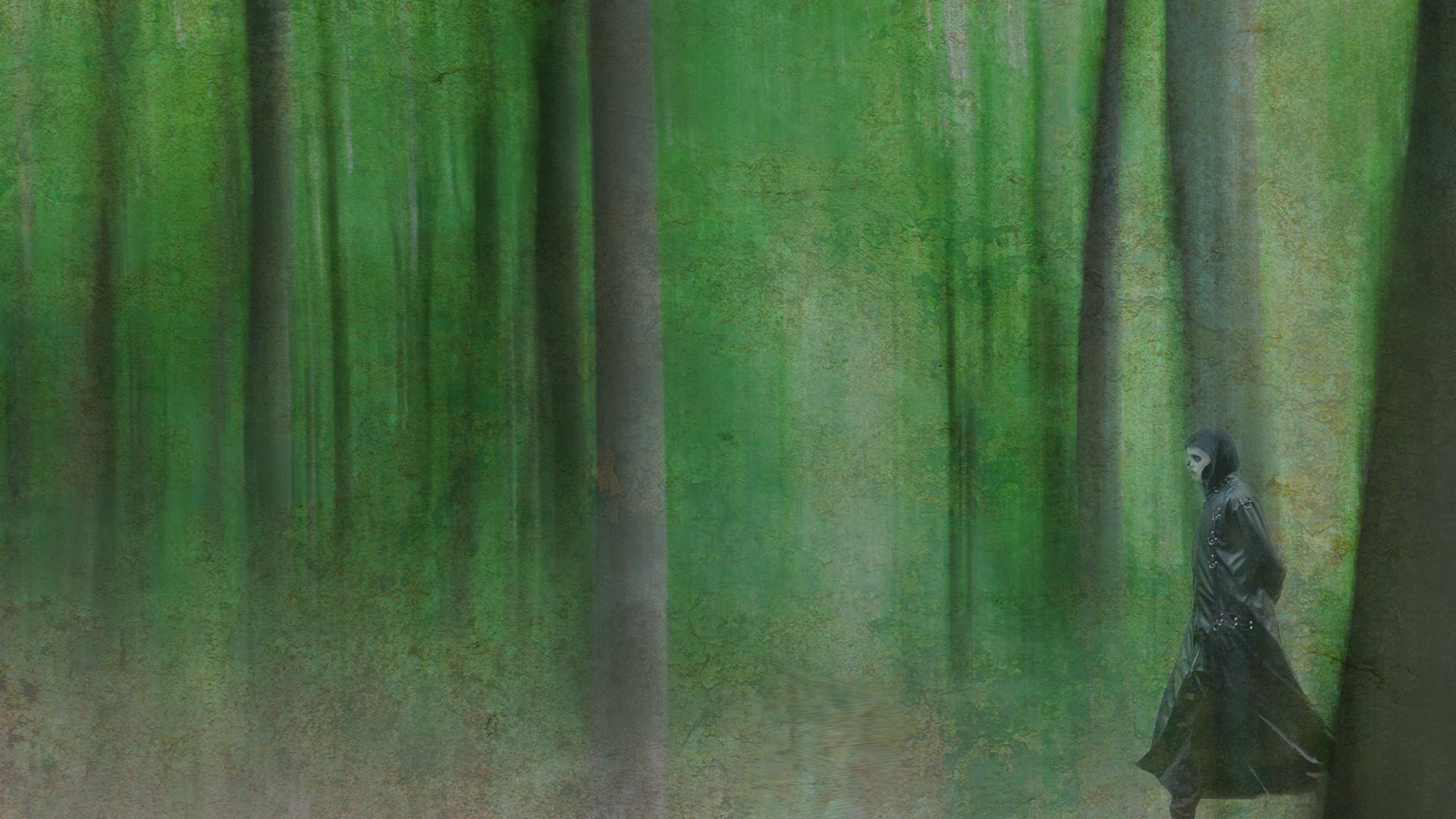 Årets billede digital 3. plads Søren Andersen Døden i den grønne skov