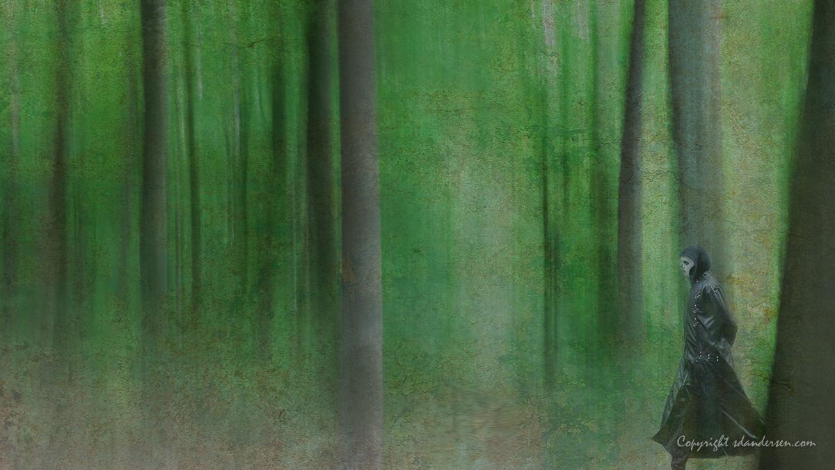 Digital 1. plads Søren D. Andersen Døden i den grønne skov